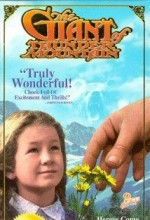 The Giant Of Thunder Mountain (1991) afişi