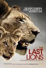 The Last Lions (2011) afişi
