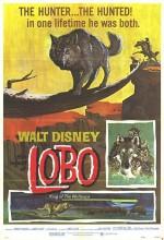 The Legend Of Lobo (1962) afişi