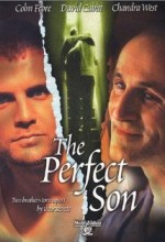 The Perfect Son (2000) afişi