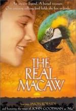 The Real Macaw (1998) afişi