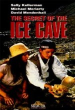 The Secret Of The ıce Cave (1989) afişi