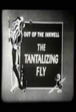 The Tantalizing Fly (1919) afişi