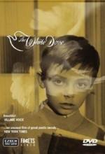 The White Dove (1920) afişi