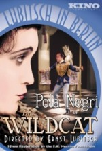 The Wildcat (1921) afişi