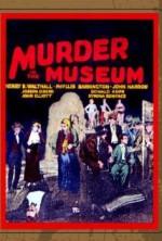 The Murder in the Museum (1934) afişi