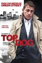 Top Dog (2014) afişi