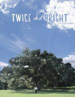 Twice As Bright (2010) afişi