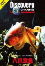 Ultimate Guide: Octopus (1999) afişi
