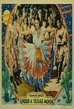 Under A Texas Moon (1930) afişi