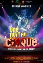 Une Nuit Au Cirque (2010) afişi