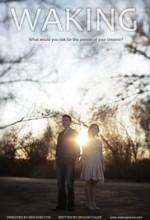 Uyanış (2013) afişi