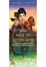 Where The Red Fern Grows (2003) afişi