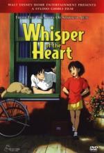 Yüreğinin Sesi (1995) afişi