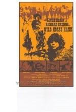 Wild Horse Hank (1979) afişi