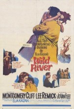 Wild River (1960) afişi