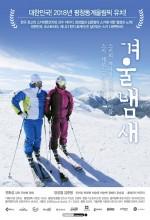 Winter Smells (2011) afişi