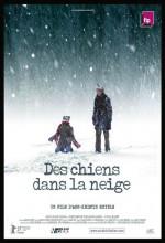 Wolves In The Snow / Des Chiens Dans La Neige
