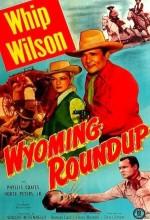 Wyoming Roundup (1952) afişi