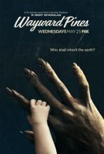 Wayward Pines 1. Sezon (2015) afişi