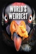 World's Weirdest (2012) afişi