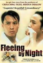 Ye Ben (2000) afişi
