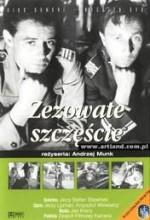 Zezowate Szczescie