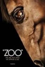 Zoo (2007) afişi