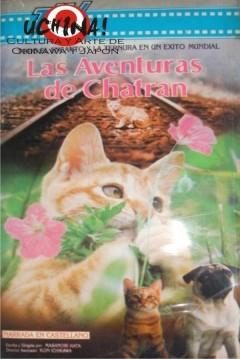 A Kitten's Story