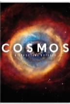 Cosmos: Bir Uzay Serüveni Sezon 1