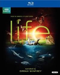 Life(ıı)