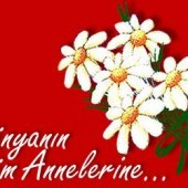 zinneteda_gurcay