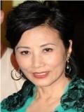 Liza Wang profil resmi