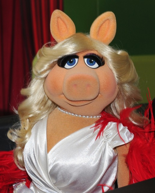 the muppets 10 - Muppets (The Muppets)