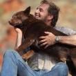 Kırmızı Köpek Resimleri