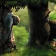Sihirli Orman (2008) Resimleri
