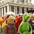 Muppets Aranıyor Resimleri