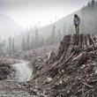 Eğer Bir Ağaç Devrilirse: Yeryüzü Özgürlük Cephesi Resimleri