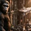 Maymunlar Cehennemi 3: Savaş Resimleri