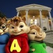 Alvin ve Sincaplar Resimleri