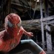 Örümcek Adam 3 Resimleri