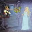 Pinokyo (I) Resimleri