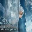 Tinker Bell: Gizemli Kanatlar Resimleri 13
