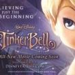 Tinker Bell: Gizemli Kanatlar Resimleri 15