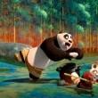 Kung Fu Panda 2 Resimleri 21