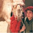 Batı şeria Hikâyesi(1) Resimleri