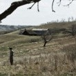 George Ryga's Hungry Hills Resimleri