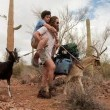 Goats Resimleri