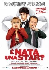È nata una star? (2012) afişi