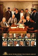 12 Kızgın Adam (tv)
